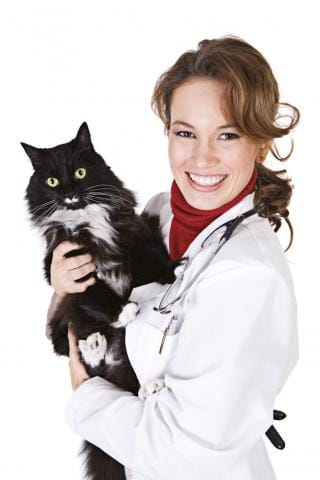 Get Trained as a Veterinary Technician Today!